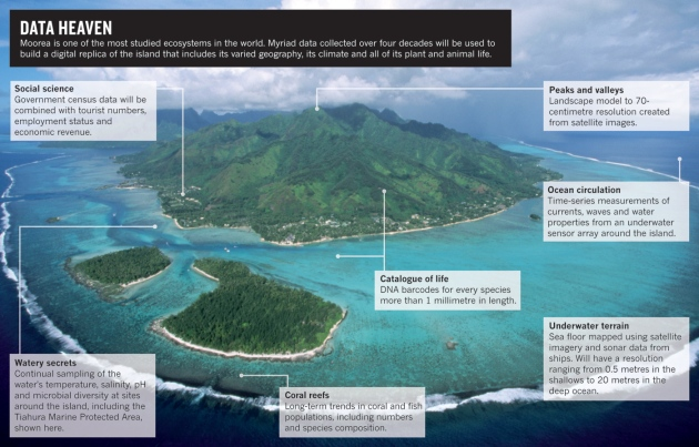 Moorea Project